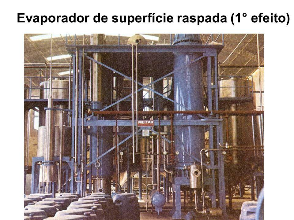 Evaporador de superfície raspada (1° efeito)