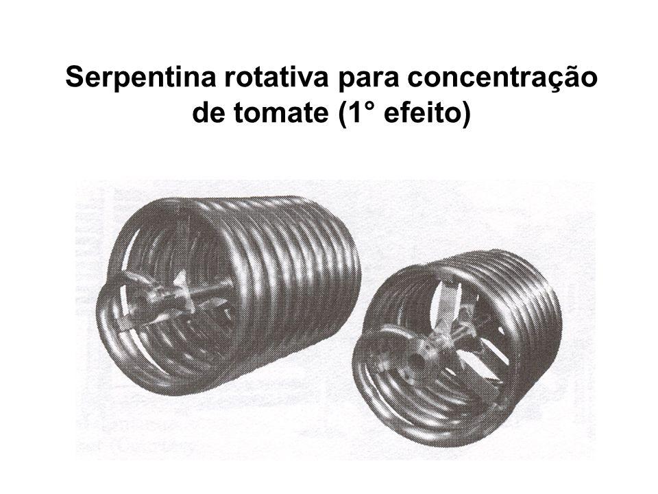 Serpentina rotativa para concentração de tomate (1° efeito)