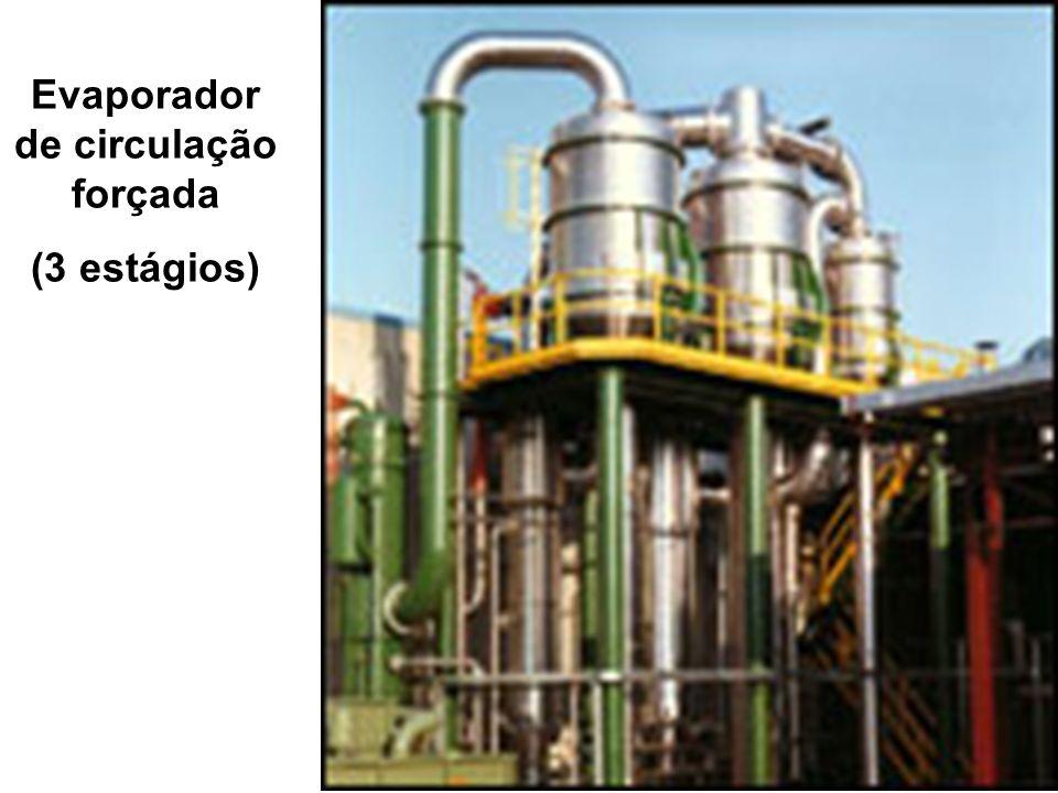 Evaporador de circulação forçada (3 estágios)