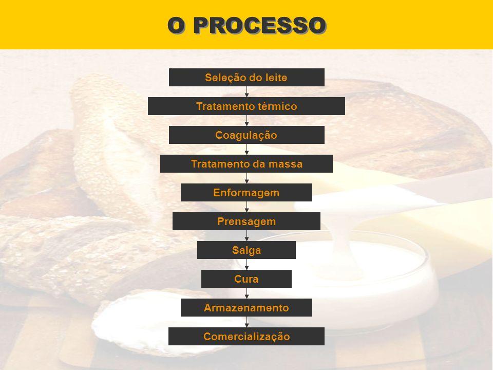 O PROCESSO Seleção do leite Tratamento térmico Coagulação Tratamento da massa Enformagem Prensagem Salga Cura Armazenamento Comercialização