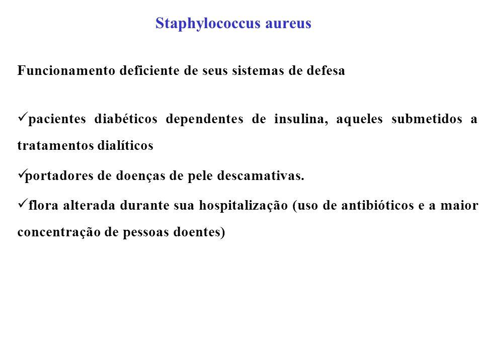 Staphylococcus aureus Funcionamento deficiente de seus sistemas de defesa pacientes diabéticos dependentes de insulina, aqueles submetidos a tratament