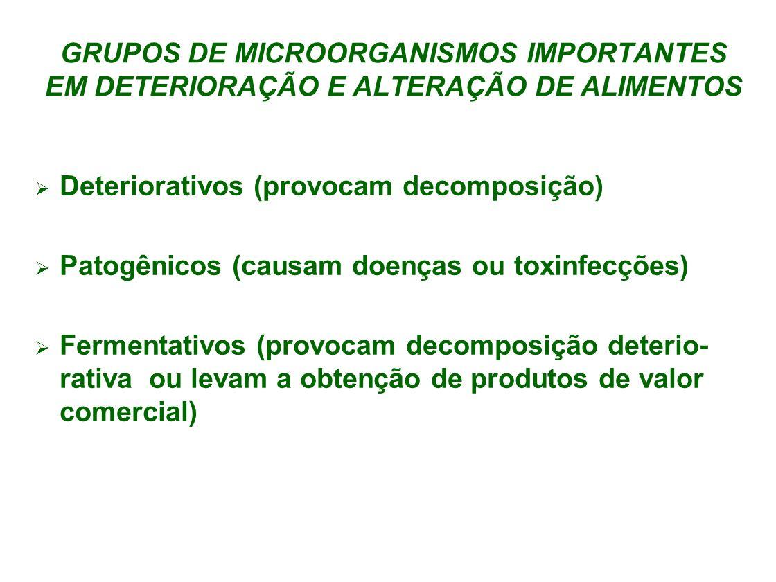GRUPOS DE MICROORGANISMOS IMPORTANTES EM DETERIORAÇÃO E ALTERAÇÃO DE ALIMENTOS Deteriorativos (provocam decomposição) Patogênicos (causam doenças ou t