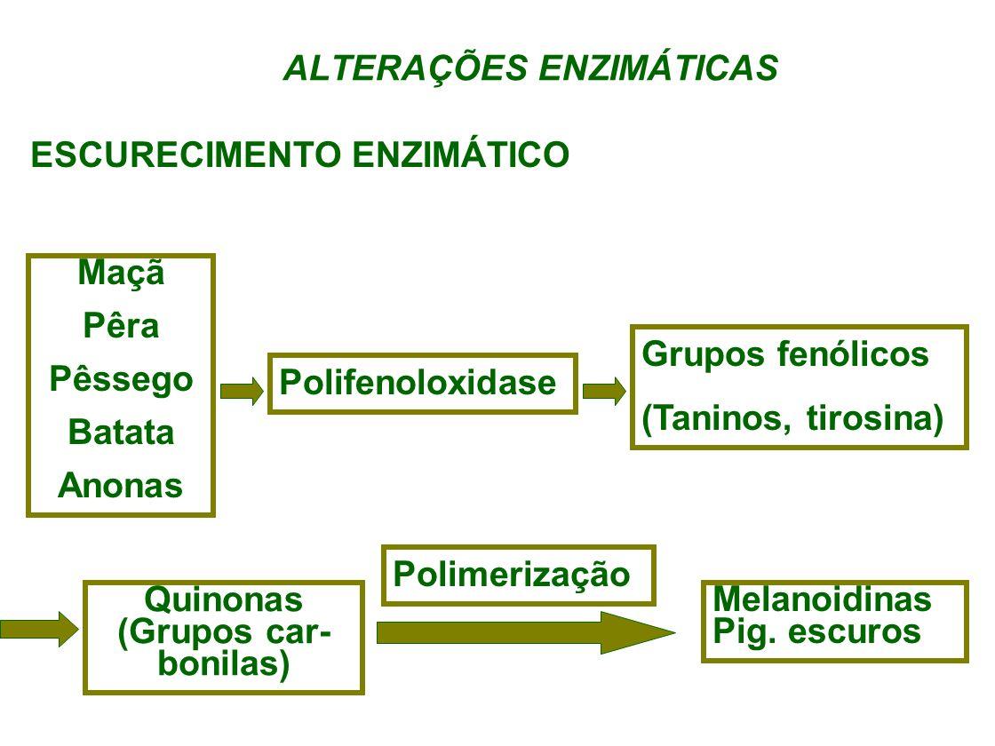 ALTERAÇÕES ENZIMÁTICAS ESCURECIMENTO ENZIMÁTICO Maçã Pêra Pêssego Batata Anonas Polifenoloxidase Grupos fenólicos (Taninos, tirosina) Quinonas (Grupos