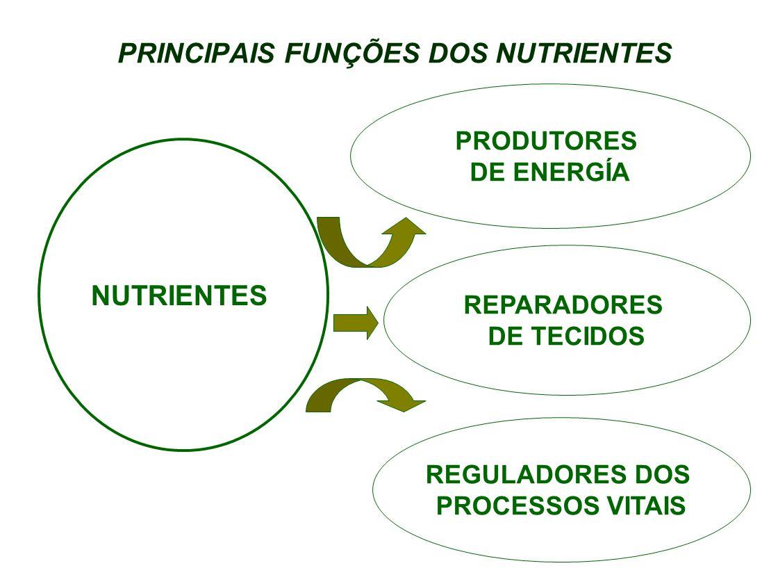 FUNÇÕES DOS NUTRIENTES GLICÍDIOS Açúcar, féculas, mel, macarrão LIPÍDIOS Manteiga, margarina, creme de leite, óleo PROTÍDEOS Carnes, leite, ovos, leguminosas NUTRIENTES PRODUTORES DE ENERGÍA