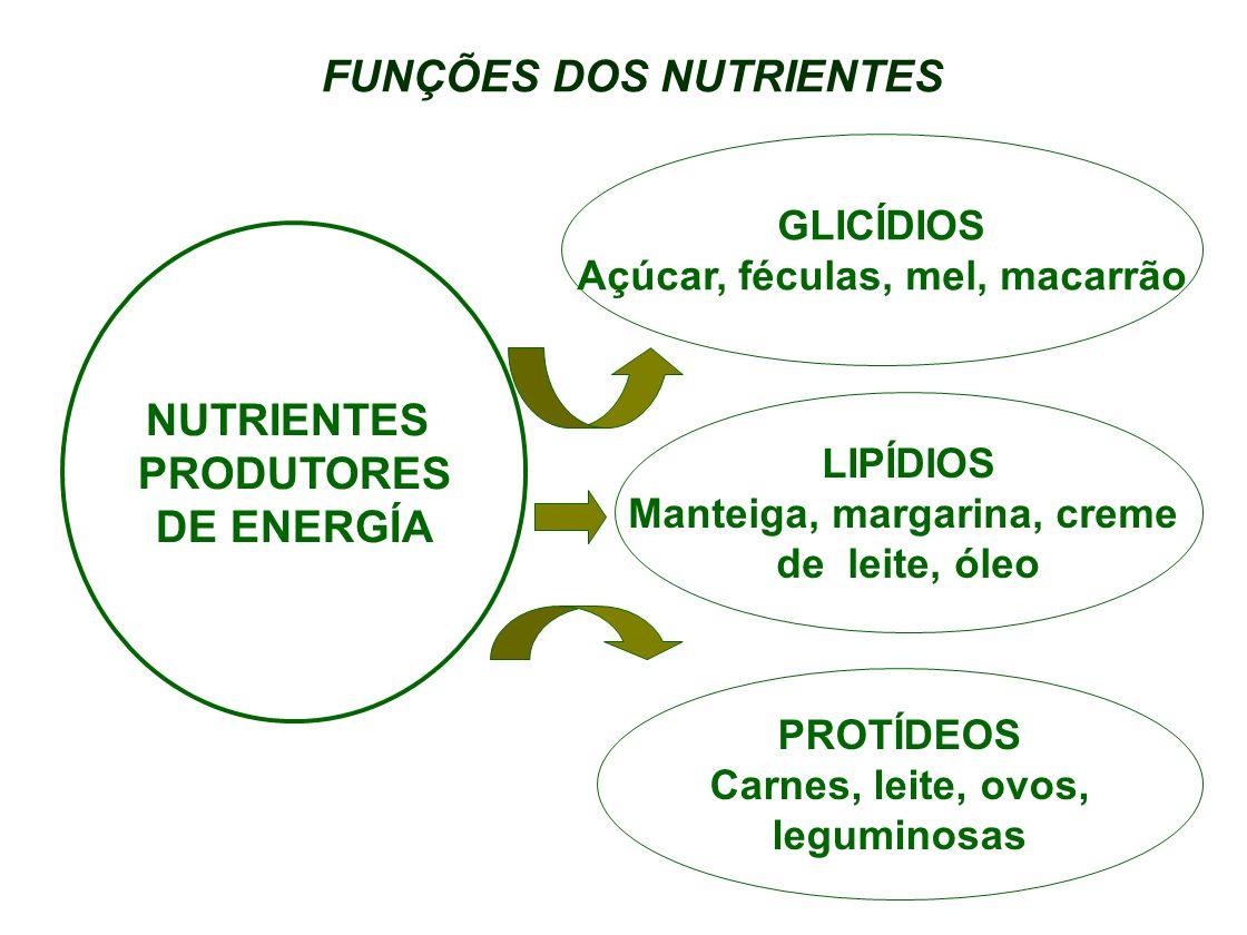 FUNÇÕES DOS NUTRIENTES GLICÍDIOS Açúcar, féculas, mel, macarrão LIPÍDIOS Manteiga, margarina, creme de leite, óleo PROTÍDEOS Carnes, leite, ovos, legu