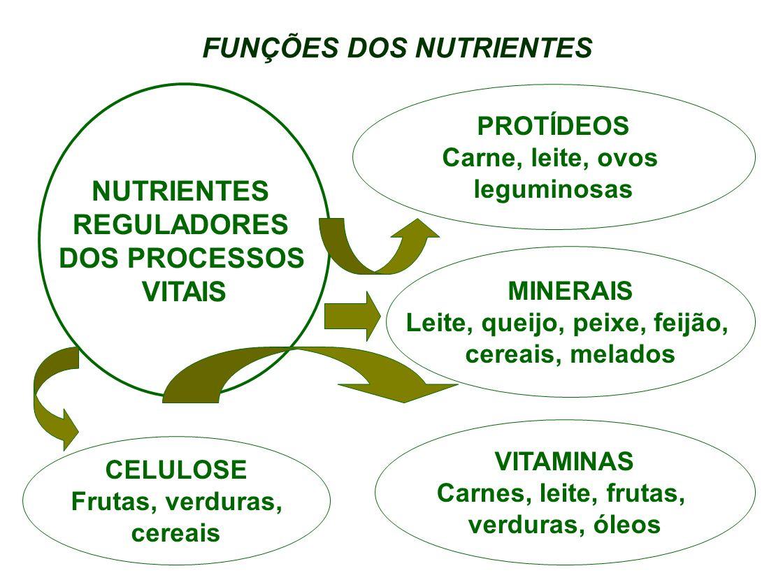 FUNÇÕES DOS NUTRIENTES PROTÍDEOS Carne, leite, ovos leguminosas MINERAIS Leite, queijo, peixe, feijão, cereais, melados VITAMINAS Carnes, leite, fruta
