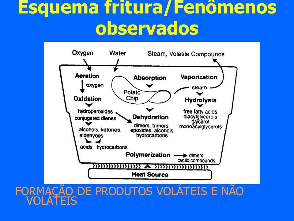Esquema fritura/Fenômenos observados FORMAÇÃO DE PRODUTOS VOLÁTEIS E NÃO VOLÁTEIS