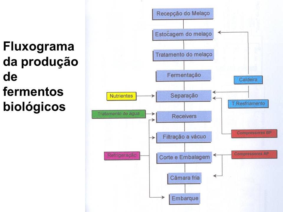 Tabela nutricional de fermentos biológicos