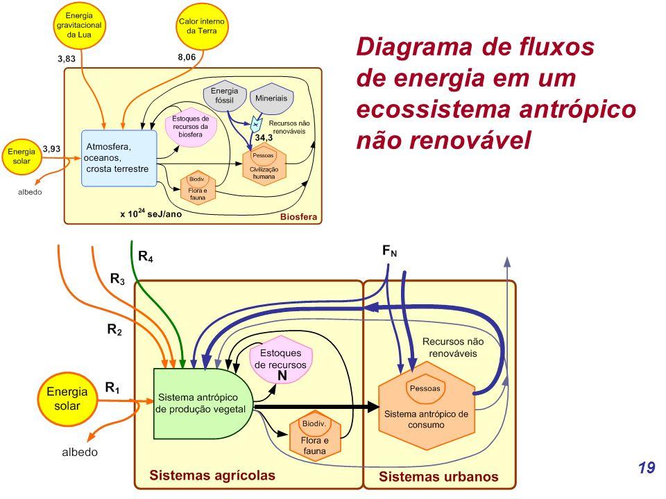 19 Diagrama de fluxos de energia em um ecossistema antrópico não renovável