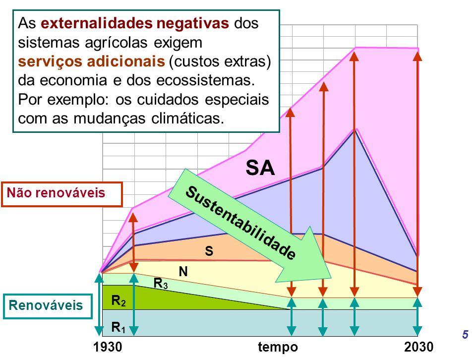 5 R1R1 R2R2 R3R3 N S M SA As externalidades negativas dos sistemas agrícolas exigem serviços adicionais (custos extras) da economia e dos ecossistemas.