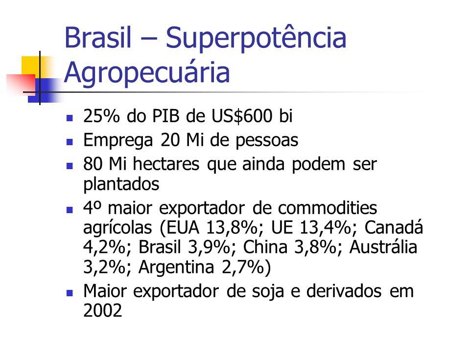 Brasil – Superpotência Agropecuária 25% do PIB de US$600 bi Emprega 20 Mi de pessoas 80 Mi hectares que ainda podem ser plantados 4º maior exportador de commodities agrícolas (EUA 13,8%; UE 13,4%; Canadá 4,2%; Brasil 3,9%; China 3,8%; Austrália 3,2%; Argentina 2,7%) Maior exportador de soja e derivados em 2002
