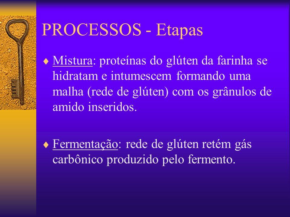 PROCESSOS - Etapas Mistura: proteínas do glúten da farinha se hidratam e intumescem formando uma malha (rede de glúten) com os grânulos de amido inser