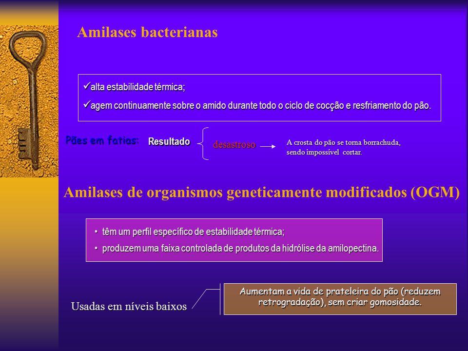 Amilases bacterianas Amilases de organismos geneticamente modificados (OGM) alta estabilidade térmica; alta estabilidade térmica; agem continuamente s