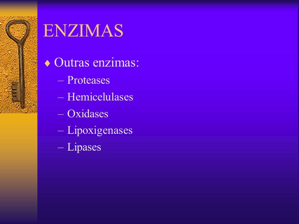 Outras enzimas: –Proteases –Hemicelulases –Oxidases –Lipoxigenases –Lipases