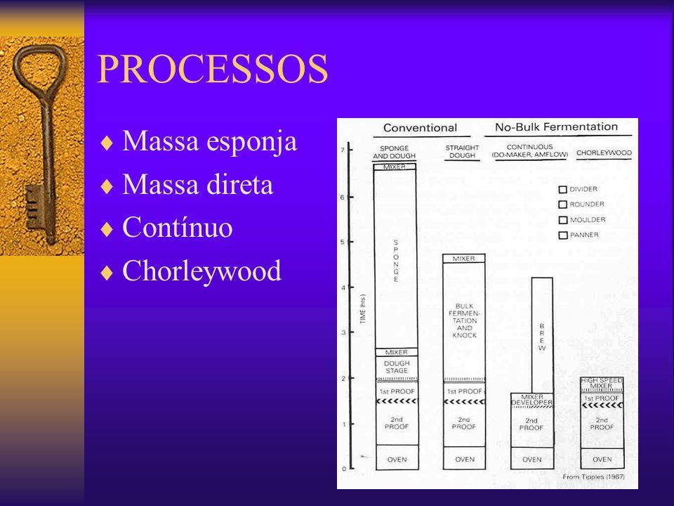 PROCESSOS - Etapas Mistura: proteínas do glúten da farinha se hidratam e intumescem formando uma malha (rede de glúten) com os grânulos de amido inseridos.