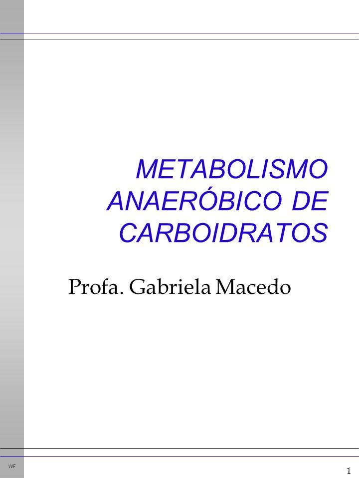 1 WF METABOLISMO ANAERÓBICO DE CARBOIDRATOS Profa. Gabriela Macedo