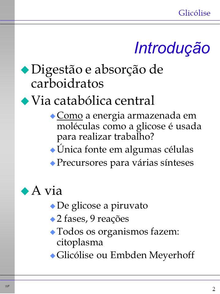 13 WF Digestão e absorção de outros carbohidratos: enzimas do I. D. (borda-em-escova)