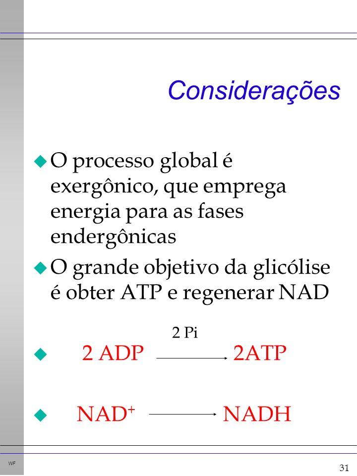 31 WF Considerações u O processo global é exergônico, que emprega energia para as fases endergônicas u O grande objetivo da glicólise é obter ATP e regenerar NAD u 2 ADP 2ATP u NAD + NADH 2 Pi