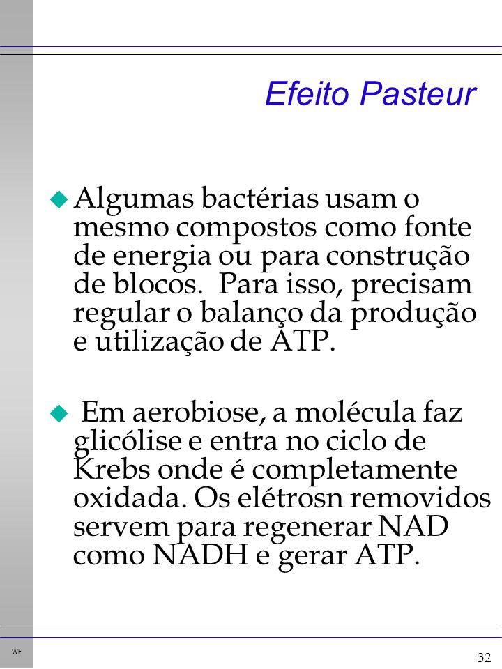 32 WF Efeito Pasteur u Algumas bactérias usam o mesmo compostos como fonte de energia ou para construção de blocos.