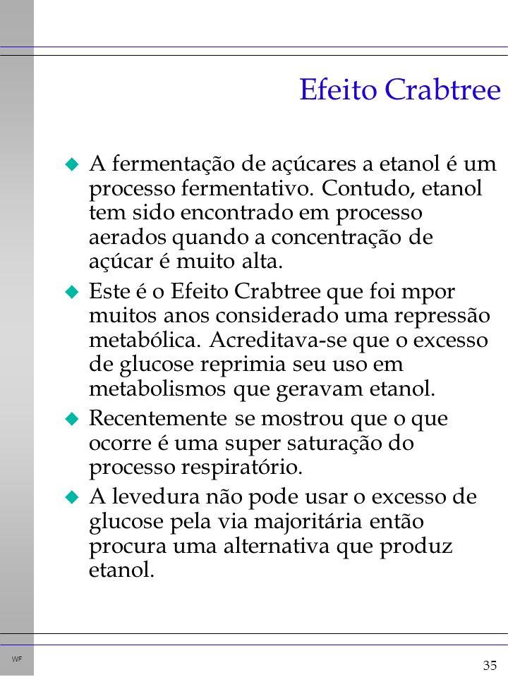 35 WF Efeito Crabtree u A fermentação de açúcares a etanol é um processo fermentativo.