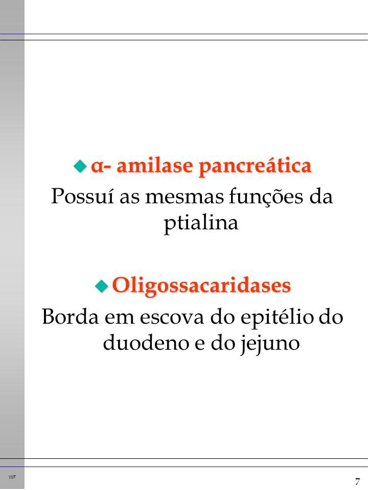 7 WF u α- amilase pancreática Possuí as mesmas funções da ptialina u Oligossacaridases Borda em escova do epitélio do duodeno e do jejuno