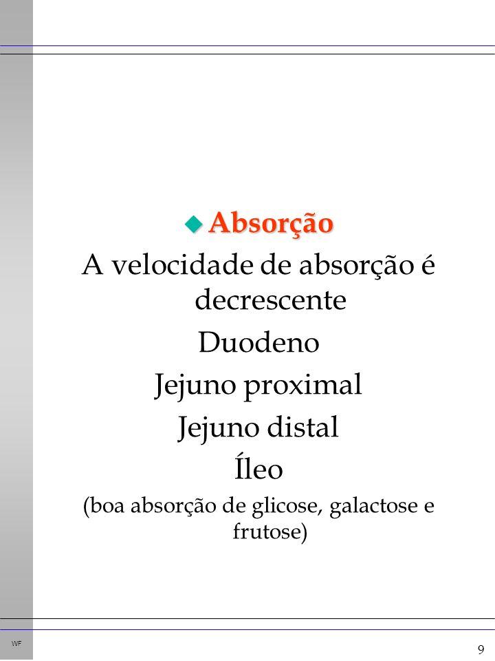 9 WF u Absorção A velocidade de absorção é decrescente Duodeno Jejuno proximal Jejuno distal Íleo (boa absorção de glicose, galactose e frutose)