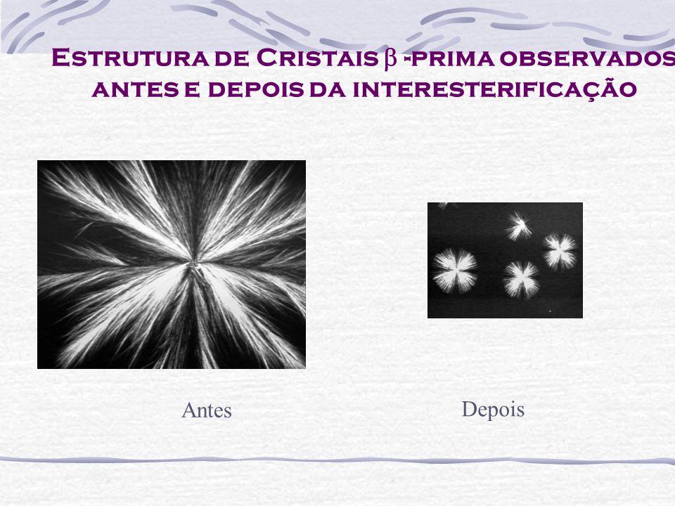 Estrutura de Cristais -prima observados antes e depois da interesterificação Antes Depois