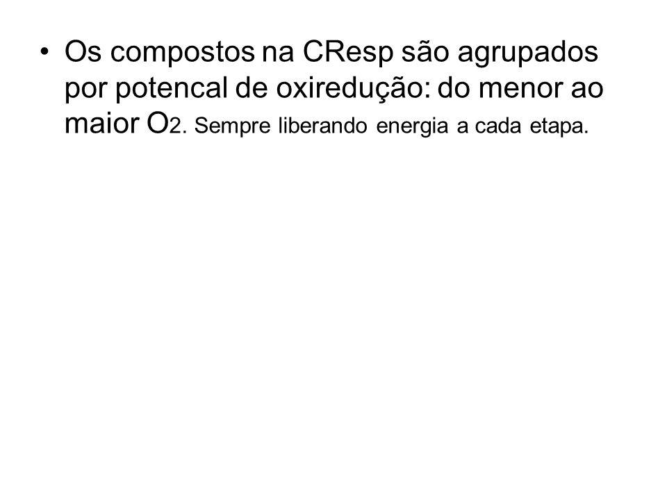 Os compostos na CResp são agrupados por potencal de oxiredução: do menor ao maior O 2. Sempre liberando energia a cada etapa.