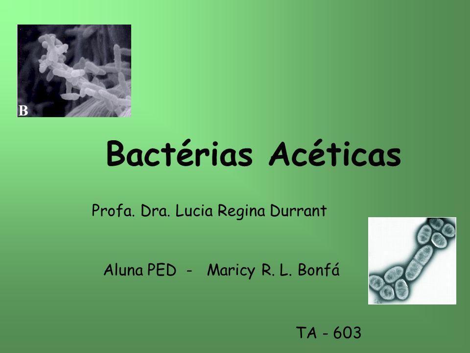 Bactérias Acéticas Aluna PED - Maricy R. L. Bonfá TA - 603 Profa. Dra. Lucia Regina Durrant