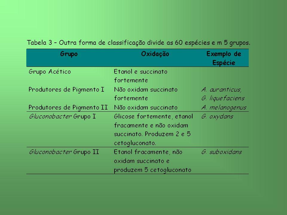 Tabela 3 – Outra forma de classificação divide as 60 espécies e m 5 grupos.