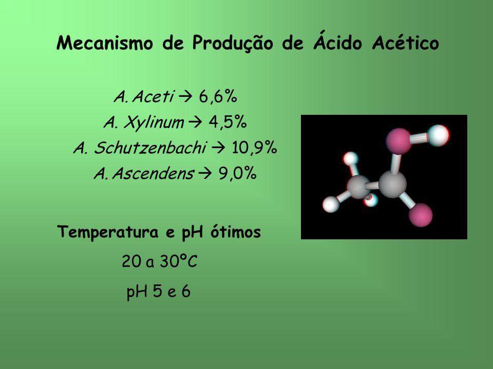 Mecanismo de Produção de Ácido Acético A.Aceti 6,6% A.