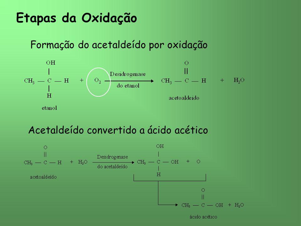 Etapas da Oxidação Formação do acetaldeído por oxidação Acetaldeído convertido a ácido acético