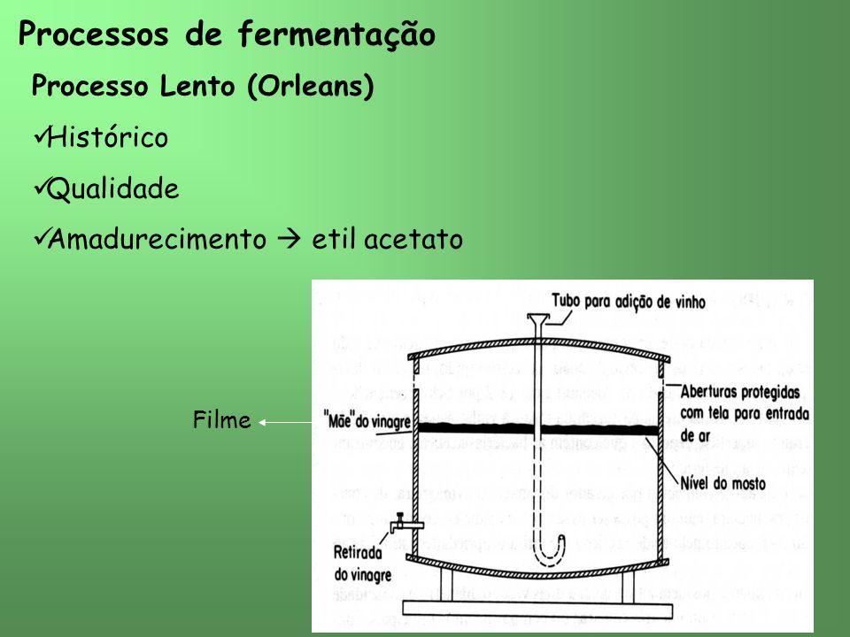 Processos de fermentação Processo Lento (Orleans) Histórico Qualidade Amadurecimento etil acetato Filme