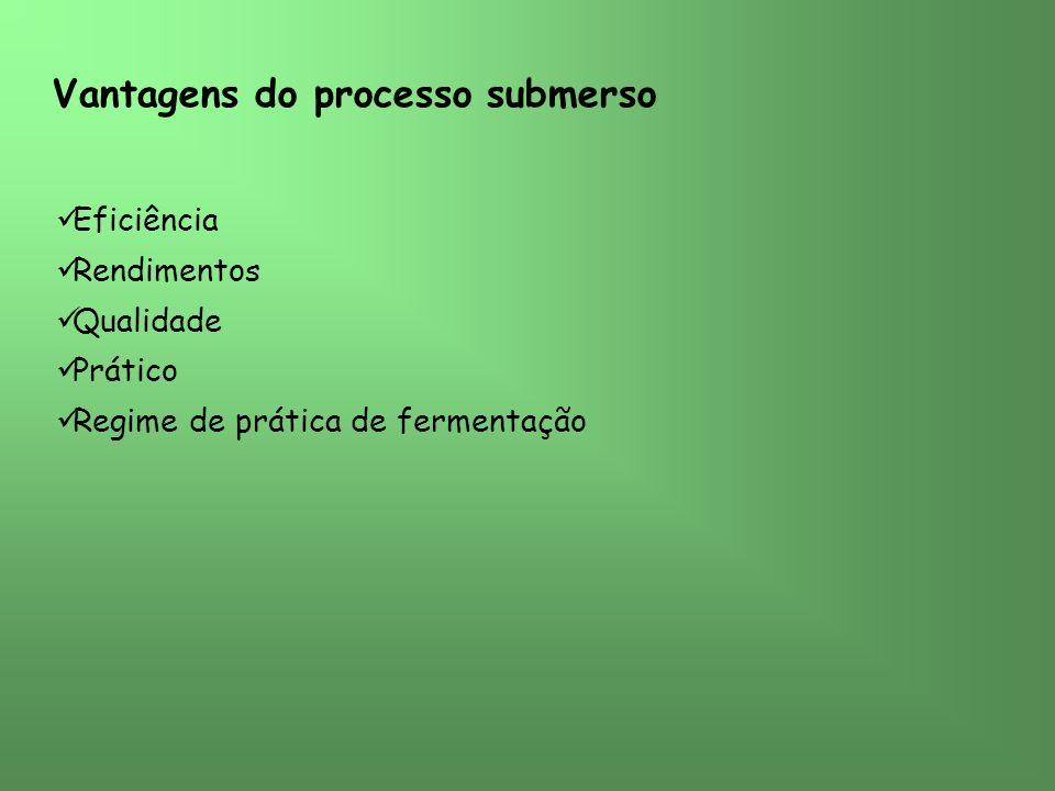 Vantagens do processo submerso Eficiência Rendimentos Qualidade Prático Regime de prática de fermentação