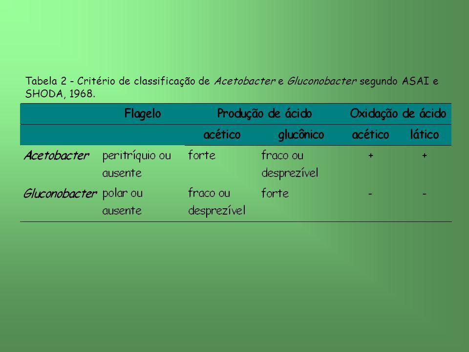 Tabela 2 - Critério de classificação de Acetobacter e Gluconobacter segundo ASAI e SHODA, 1968.