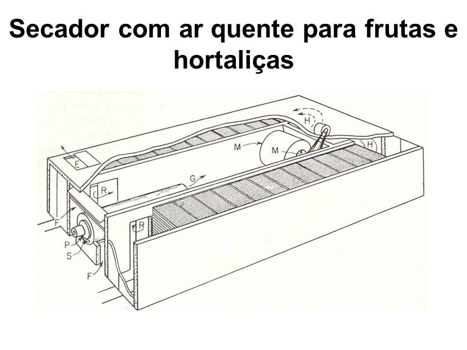 Secador com ar quente para frutas e hortaliças