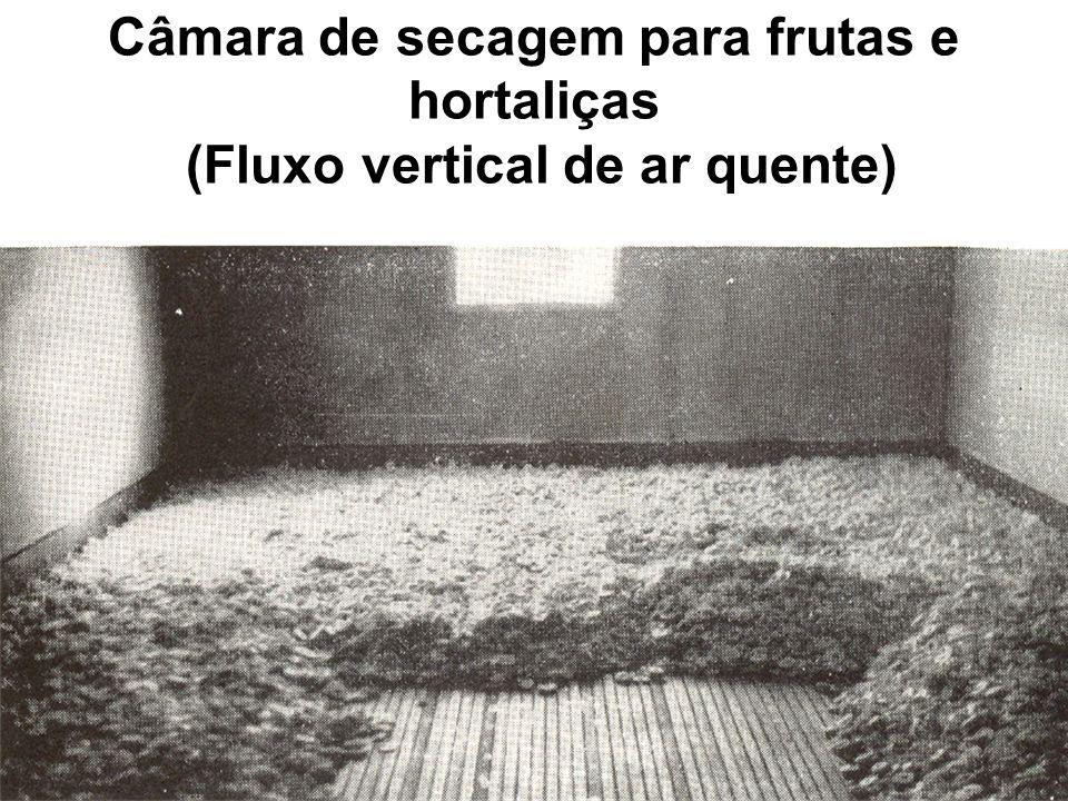 Câmara de secagem para frutas e hortaliças (Fluxo vertical de ar quente)