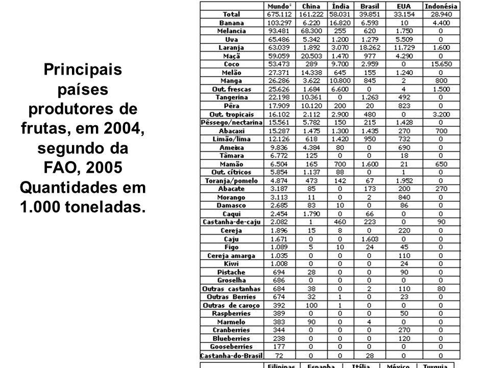 Principais países produtores de frutas, em 2004, segundo da FAO, 2005 Quantidades em 1.000 toneladas.