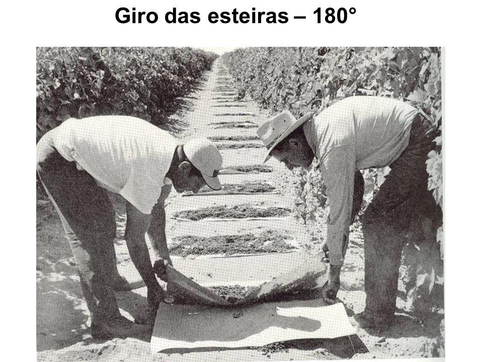 Giro das esteiras – 180°