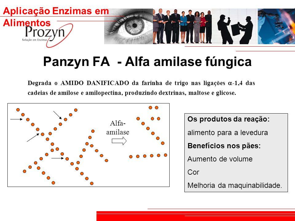 Aplicação Enzimas em Alimentos Panzyn FA - Alfa amilase fúngica Alfa- amilase Degrada o AMIDO DANIFICADO da farinha de trigo nas ligações -1,4 das cad
