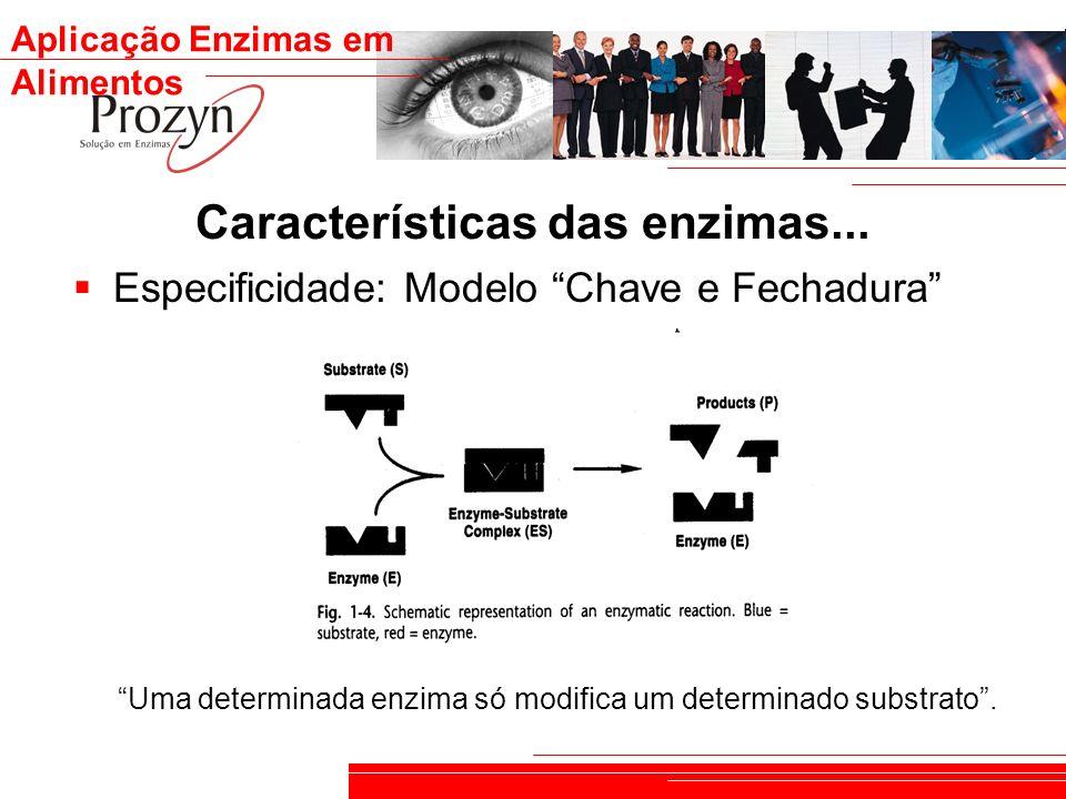 Aplicação Enzimas em Alimentos Características das enzimas... Especificidade: Modelo Chave e Fechadura Uma determinada enzima só modifica um determina