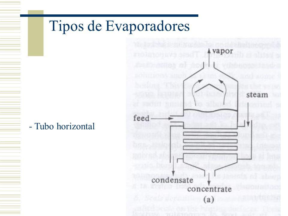 Tipos de Evaporadores - Tubo vertical