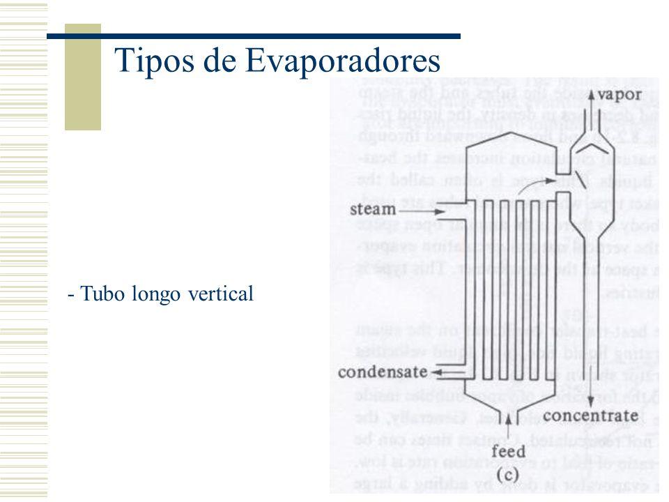 Tipos de Evaporadores - Tubo longo vertical