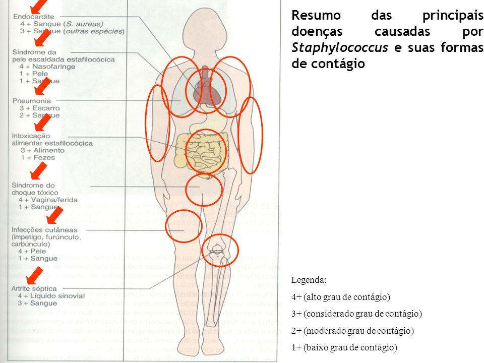 Resumo das principais doenças causadas por Staphylococcus e suas formas de contágio Legenda: 4+ (alto grau de contágio) 3+ (considerado grau de contág