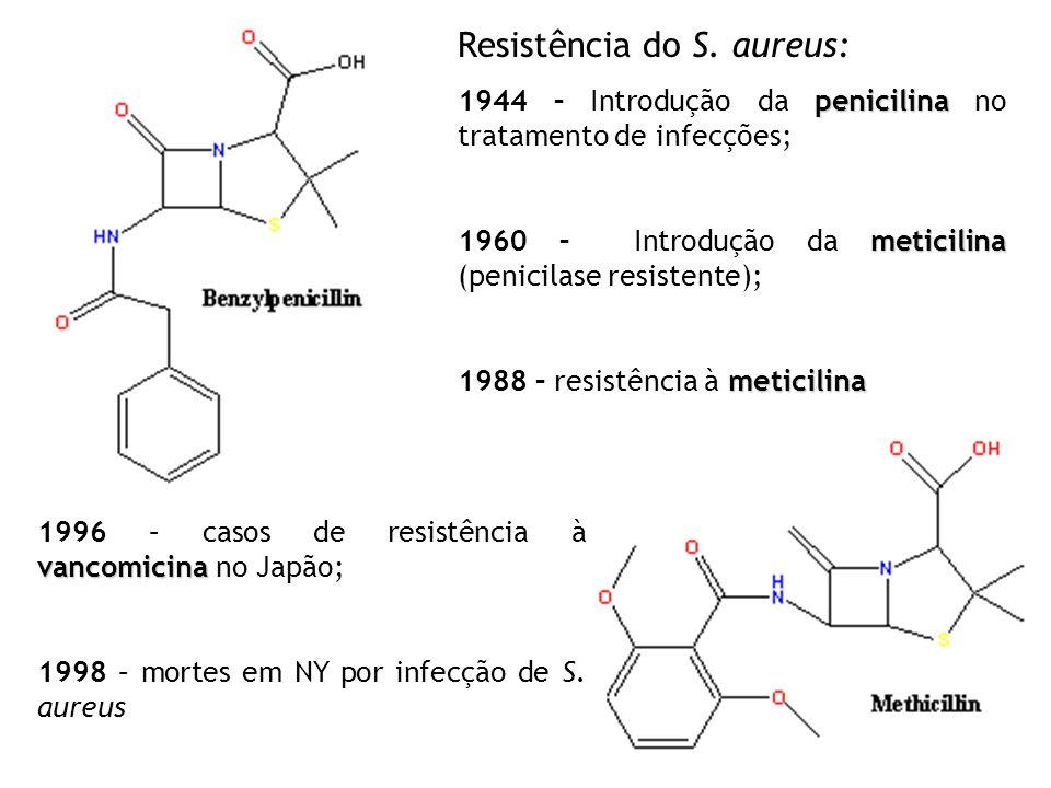 VANCOMICINA – único antibiótico eficiente para cepas meticilina - resitentes Resistência conferida por genes extra-cromossômicos; Mutação nos cromossomos; Adição de material genético por transposons; 1993 – Enterococcus possuem genes plasmidiais responsáveis pela resistência à vancomicina (tranferência p/ Staphylococcus) (PLP) – perfil de proteína de ligação à penicilina; (R) cepas meticilina –resistentes (S) Cepas sensíveis à meticilina