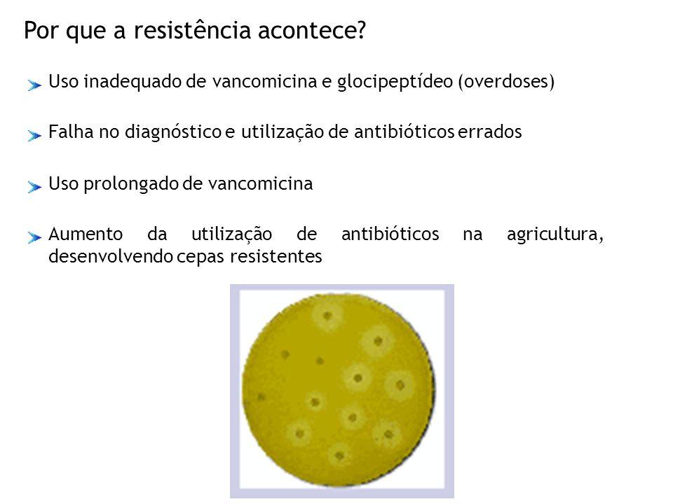 Por que a resistência acontece? Uso prolongado de vancomicina Aumento da utilização de antibióticos na agricultura, desenvolvendo cepas resistentes Us