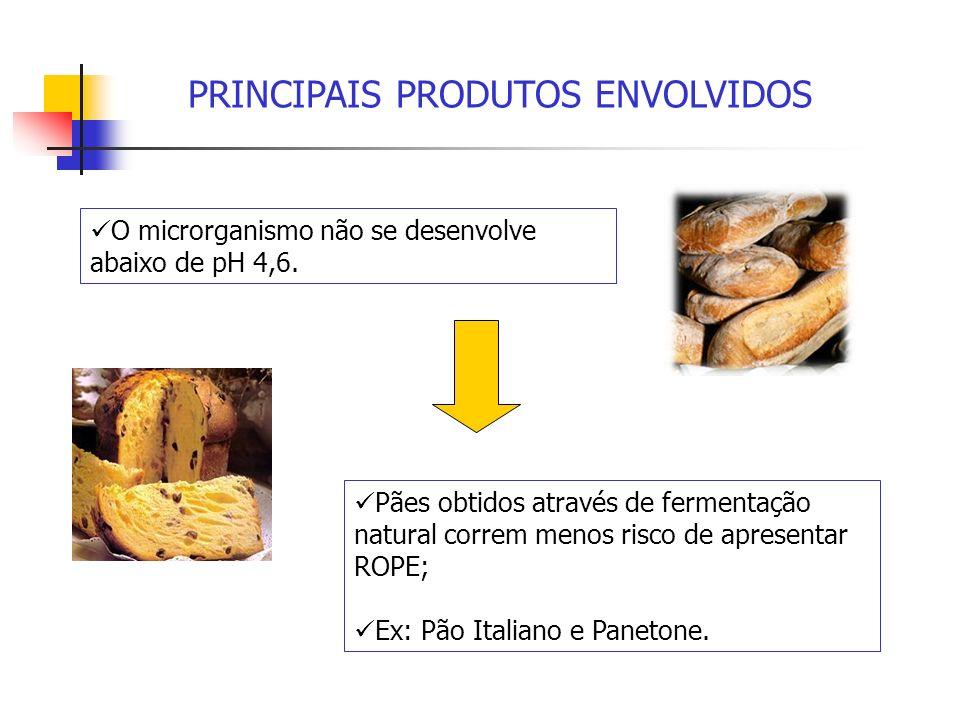 PRINCIPAIS PRODUTOS ENVOLVIDOS O microrganismo não se desenvolve abaixo de pH 4,6. Pães obtidos através de fermentação natural correm menos risco de a