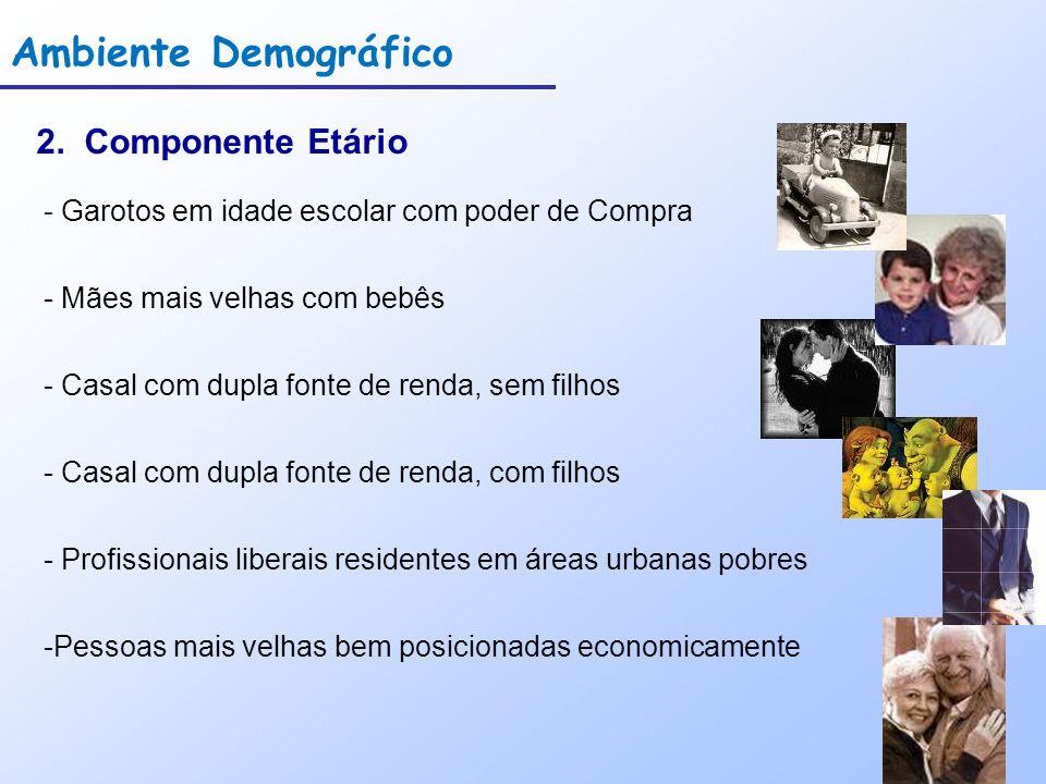Ambiente Demográfico 2. Componente Etário - Garotos em idade escolar com poder de Compra - Mães mais velhas com bebês - Casal com dupla fonte de renda