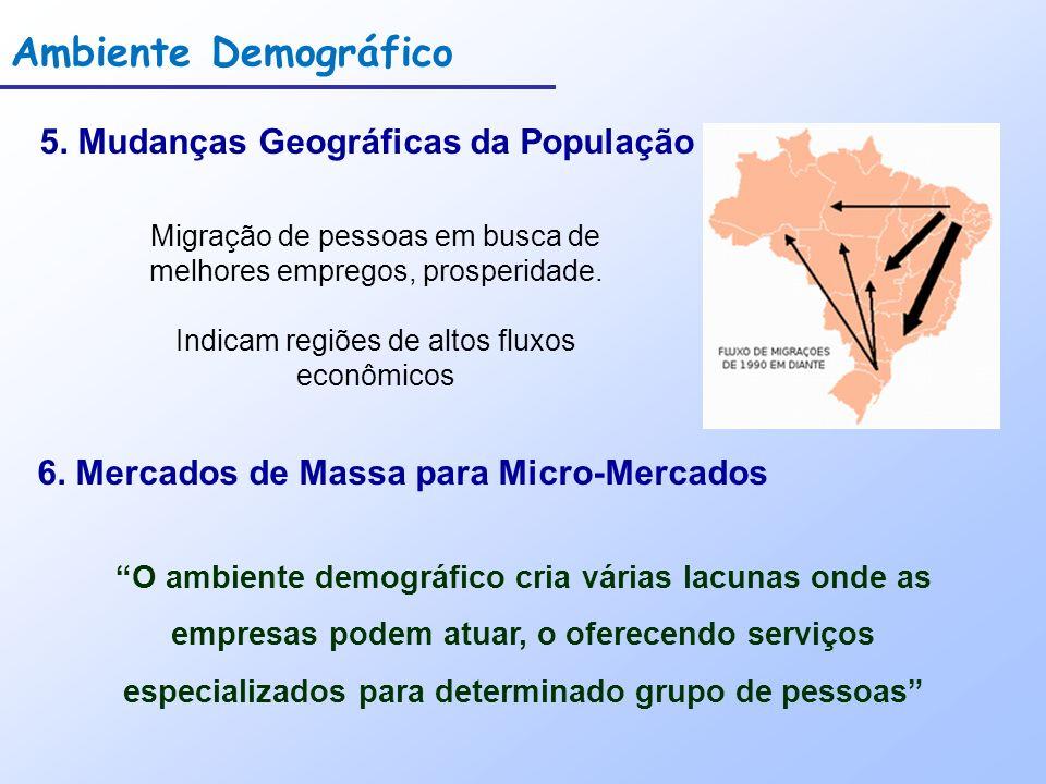 Ambiente Demográfico 5. Mudanças Geográficas da População Migração de pessoas em busca de melhores empregos, prosperidade. Indicam regiões de altos fl