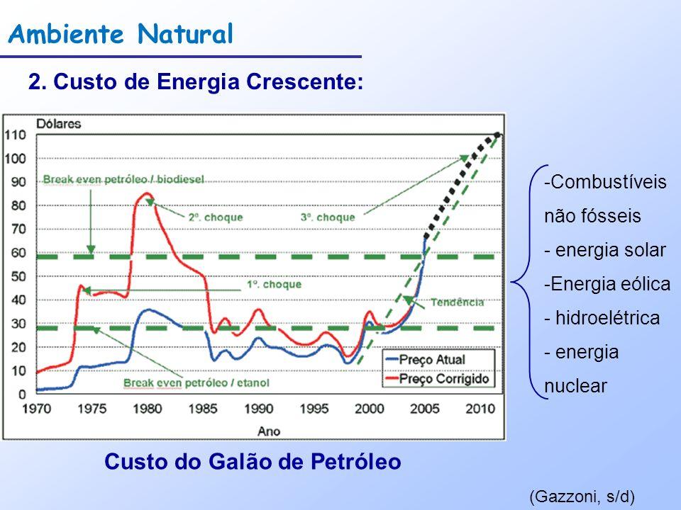 Ambiente Natural 2. Custo de Energia Crescente: (Gazzoni, s/d) Custo do Galão de Petróleo -Combustíveis não fósseis - energia solar -Energia eólica -